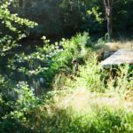 Le Canal du Nivernais par Julien Philippon